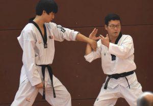 Seminar_Poomsae_Kang_erklärt (Large)